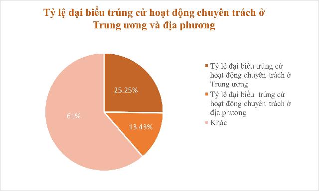Những biểu đồ tổng quan về đại biểu Quốc hội khóa XV - Ảnh 4.