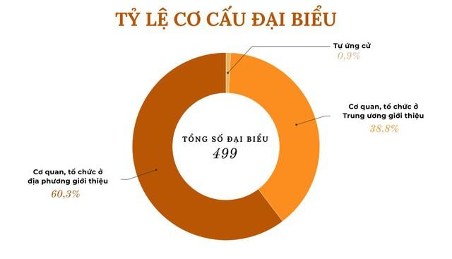 Những biểu đồ tổng quan về đại biểu Quốc hội khóa XV - Ảnh 3.