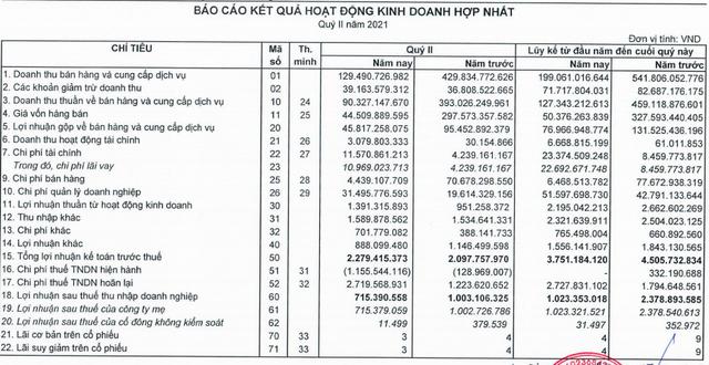 Đầu tư LDG: 6 tháng chỉ lãi 1 tỷ trong khi kế hoạch năm đến 301 tỷ đồng, nợ vay tăng đột biến - Ảnh 1.