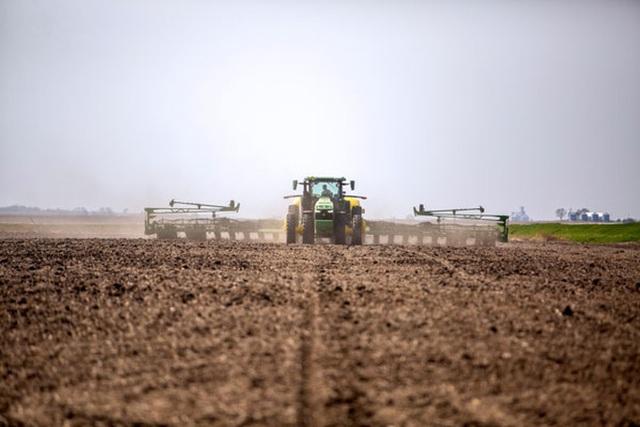 Mỹ lo Trung Quốc thâu tóm đất nông nghiệp - Ảnh 1.