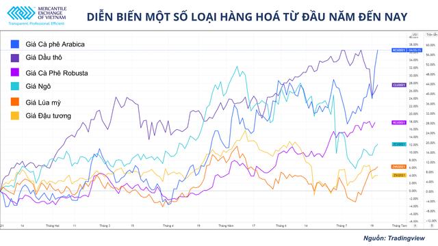 Giá cà phê thế giới tăng mạnh có là cơ hội cho ngành xuất khẩu cà phê Việt Nam? - Ảnh 1.