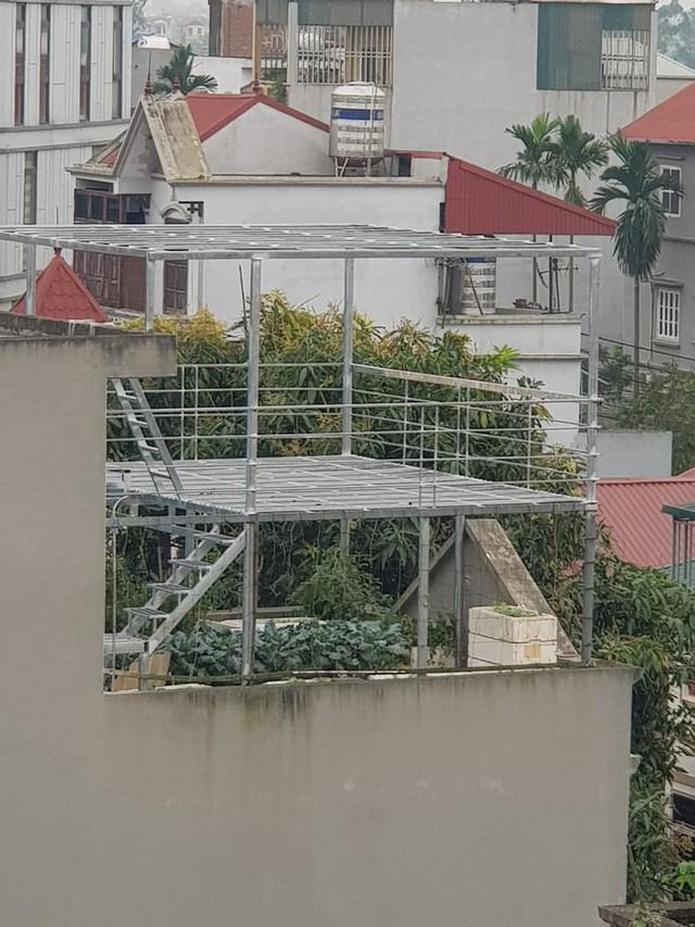 Khu vườn trên sân thượng đầy ắp rau quả xanh mướt ngay ở Hà Nội khiến ai cũng ước ao: Mùa nào thức nấy, rau xanh quả ngọt lại đảm bảo sạch sẽ! - Ảnh 1.