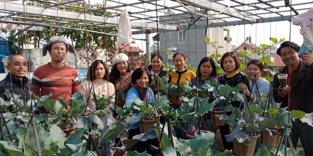 Khu vườn trên sân thượng đầy ắp rau quả xanh mướt ngay ở Hà Nội khiến ai cũng ước ao: Mùa nào thức nấy, rau xanh quả ngọt lại đảm bảo sạch sẽ! - Ảnh 19.