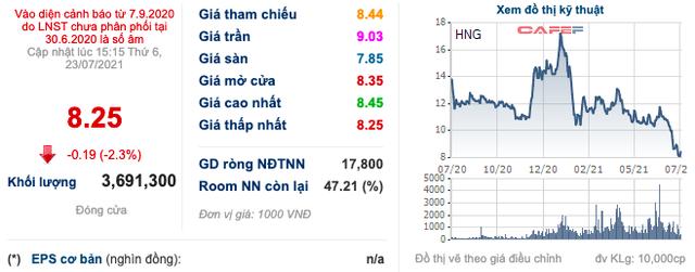 Thị giá giảm mạnh cùng việc không nhận được giấy tờ đất, Thaco dừng việc mua thêm cổ phiếu HAGL Agrico (HNG) - Ảnh 1.