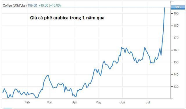 """Giá cà phê tăng 20% chỉ trong một tuần, đạt """"đỉnh"""" 6,5 năm, dự báo tăng thêm 25% nữa - Ảnh 1."""