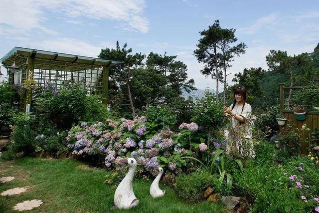 Người phụ nữ bỏ phố về quê để xây dựng vườn hoa 1500m2 đẹp nhất Trung Quốc: Nửa đời người dành cho gia đình, nửa đời sau, hãy dành cho chính mình - Ảnh 2.
