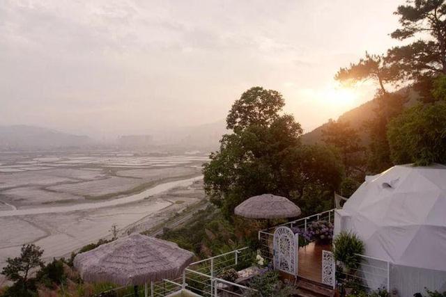 Người phụ nữ bỏ phố về quê để xây dựng vườn hoa 1500m2 đẹp nhất Trung Quốc: Nửa đời người dành cho gia đình, nửa đời sau, hãy dành cho chính mình - Ảnh 5.