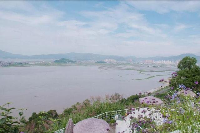 Người phụ nữ bỏ phố về quê để xây dựng vườn hoa 1500m2 đẹp nhất Trung Quốc: Nửa đời người dành cho gia đình, nửa đời sau, hãy dành cho chính mình - Ảnh 7.