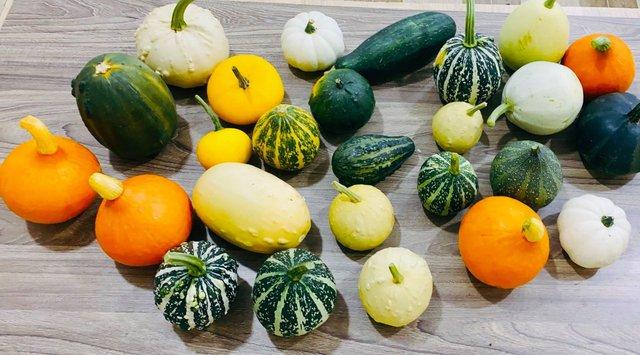 Điểm mặt 7 loại thực phẩm ngon - bổ - rẻ, để được lâu ngày không cần tủ lạnh - Ảnh 2.
