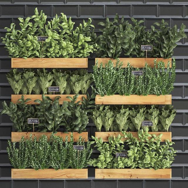 Cách thiết kế vườn rau sân thượng mùa dịch vừa đơn giản lại đẹp mắt  - Ảnh 3.