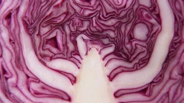 6 loại thực phẩm nên ăn nhiều trong mùa dịch để tăng cường miễn dịch, chống oxy hóa và bảo vệ mạch máu - Ảnh 6.