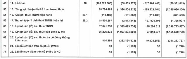 HAGL: Chuyển từ lỗ ngàn tỷ sang có lãi, mảng nuôi heo sau 1 năm đã thu về 94 tỷ lãi gộp trong quý 2 - gấp đôi con số từ cây ăn trái - Ảnh 2.
