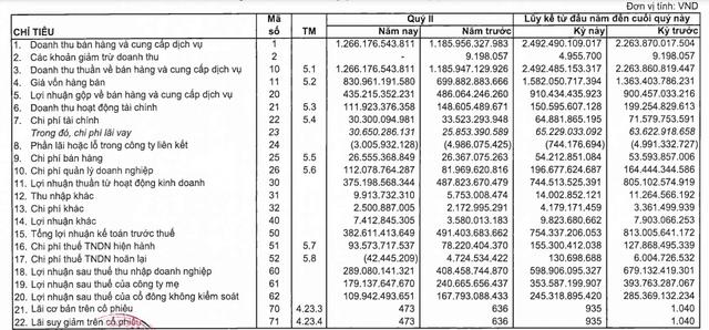 Sonadezi (SNZ) lãi xấp xỉ 600 tỷ đồng trong 6 tháng đầu năm, hoàn thành 59% kế hoạch - Ảnh 1.