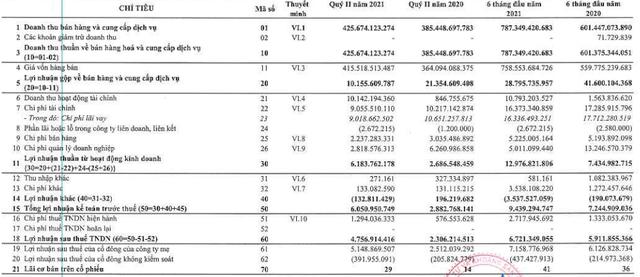 Doanh thu tài chính tăng mạnh, FLC Stone (AMD) báo lãi quý 2 gấp đôi cùng kỳ, 6 tháng hoàn thành 31% kế hoạch năm - Ảnh 1.