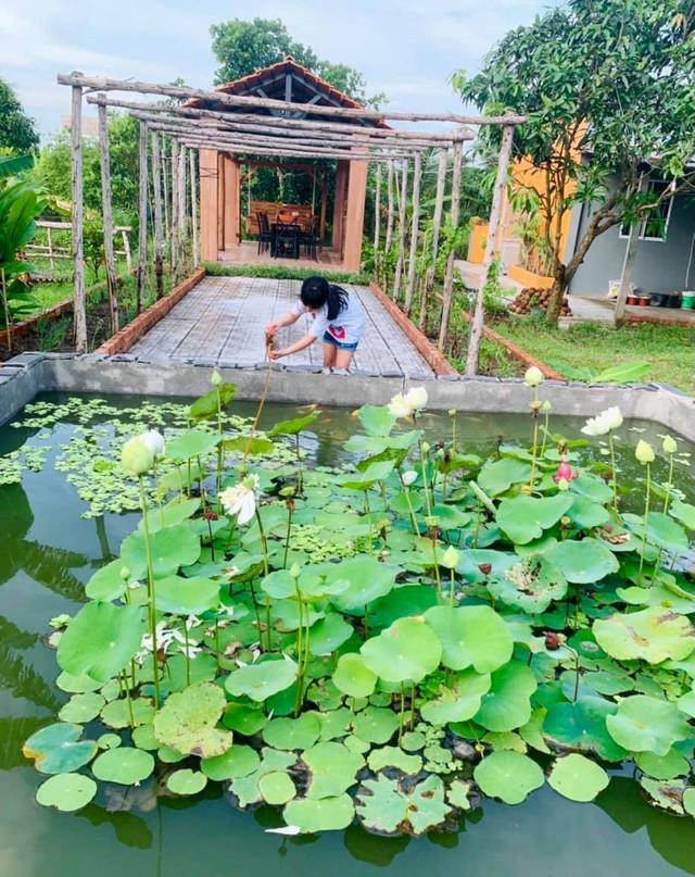 """Khu vườn """"copy Lý Tử Thất"""" rộng 2.500m2 ở Bạc Liêu: Vườn rau, ao cá, sum sê cây trái và nhiều góc sống ảo, ai nhìn cũng mê - Ảnh 1."""