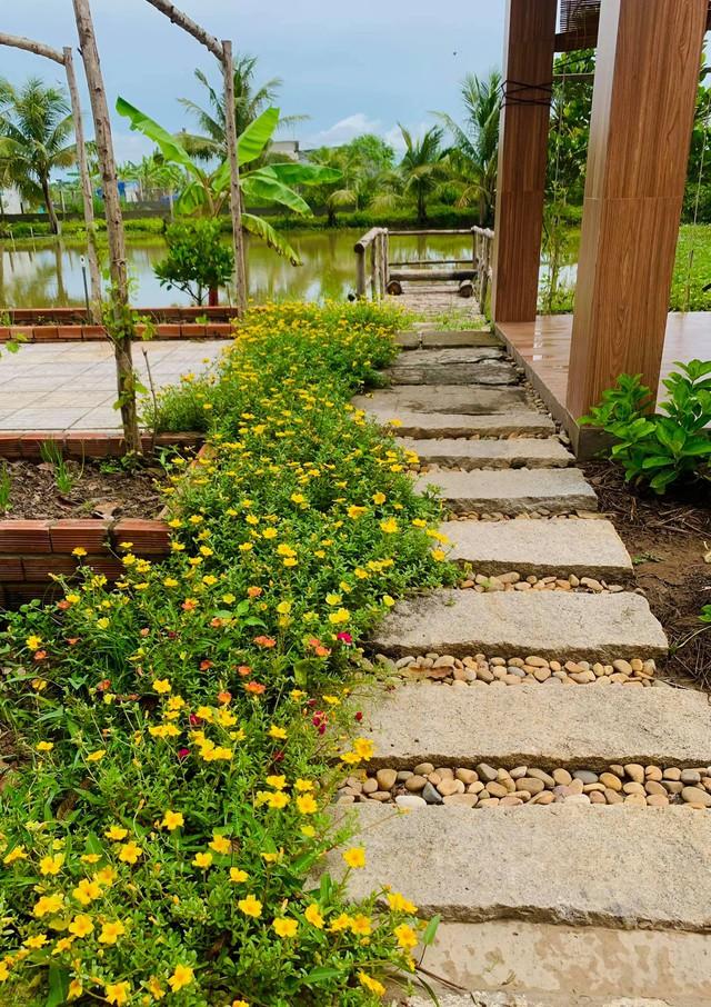 """Khu vườn """"copy Lý Tử Thất"""" rộng 2.500m2 ở Bạc Liêu: Vườn rau, ao cá, sum sê cây trái và nhiều góc sống ảo, ai nhìn cũng mê - Ảnh 10."""