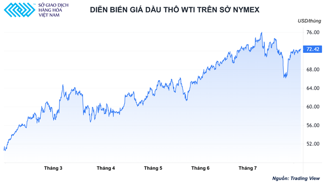 Triển vọng giá dầu 80 USD/thùng và thách thức từ biến chủng Delta - Ảnh 1.