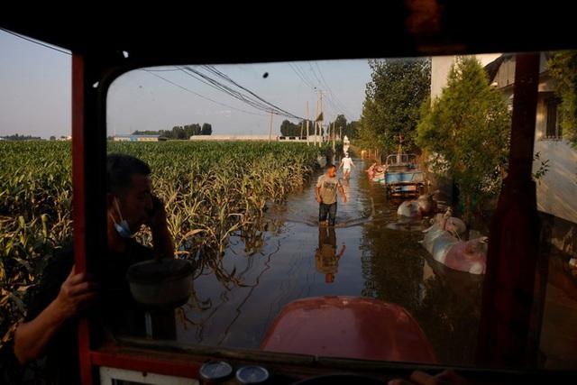 Nguồn sống bị mưa lũ nuốt chửng, người nông dân TQ tuyệt vọng cùng cực: Bầu trời như sụp đổ! - Ảnh 3.