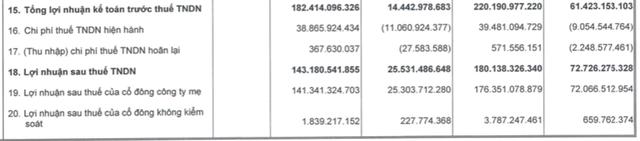 TTC Land (SCR): 6 tháng đạt 220 tỷ LNTT, cao gấp 3,5 lần cùng kỳ và thực hiện 95% kế hoạch năm - Ảnh 2.