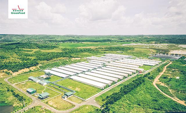 Đón đầu cơ hội từ sự khan hiếm thịt lợn, World Bank rót 1.000 tỷ vào Greenfeed Việt Nam: Mục tiêu cung cấp 125.000 tấn/năm, phục vụ thêm 385.000 người dùng - Ảnh 1.