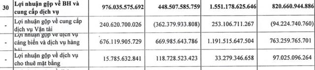 Kinh doanh vận tải có hiệu quả, Vinalines (MVN) báo lãi quý 2/2021 đạt 375 tỷ đồng, cao gấp 6 lần cùng kỳ năm trước - Ảnh 2.