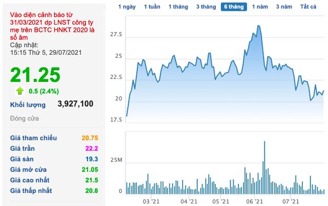 Đất Xanh (DXG): Nửa đầu năm doanh thu tăng 6,5 lần, LNST ghi nhận 1.189 tỷ đồng - Ảnh 2.