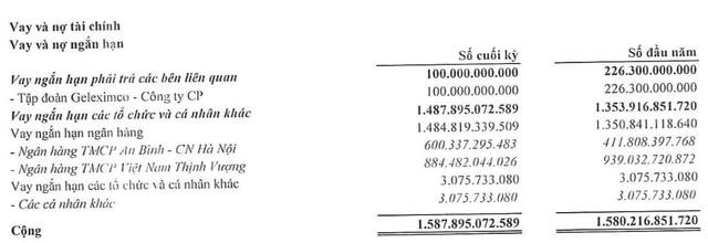 Đầu tư Tổng hợp Hà Nội (SHN): Kinh doanh than kém hiệu quả, quý 2 lãi giảm 96% so với cùng kỳ - Ảnh 5.