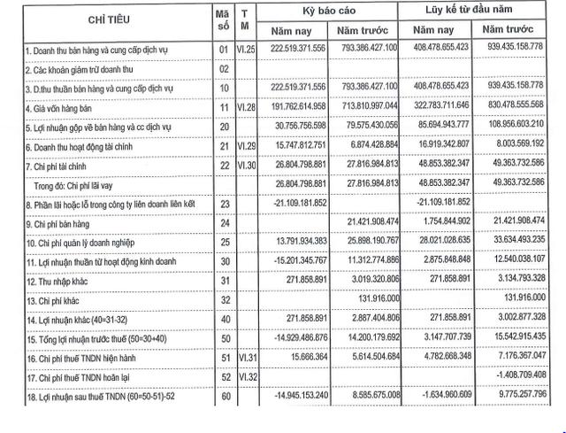 Tổng Công ty 36 (G36): Gánh lỗ từ các công ty liên doanh liên kết, quý 2 ghi nhận lỗ gần 15 tỷ đồng - Ảnh 1.