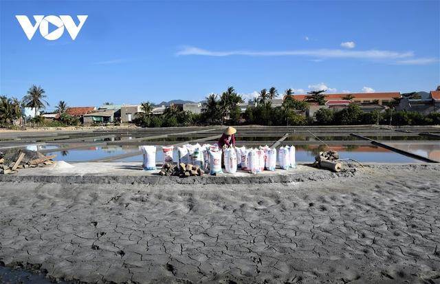 Giá muối xuống thấp, người dân Bình Định gặp khó - Ảnh 2.