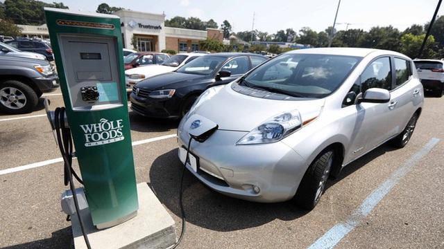 Mỹ tụt hậu trước Châu Âu và Trung Quốc trong cuộc đua sản xuất xe điện - Ảnh 2.