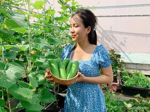 Khu vườn xanh tươi trên mái nhà và bí quyết đáng học hỏi của mẹ 3 con ở Sài Gòn - Ảnh 2.