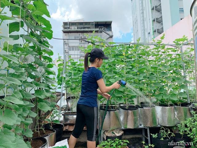 Khu vườn xanh tươi trên mái nhà và bí quyết đáng học hỏi của mẹ 3 con ở Sài Gòn - Ảnh 3.