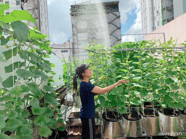 Khu vườn xanh tươi trên mái nhà và bí quyết đáng học hỏi của mẹ 3 con ở Sài Gòn - Ảnh 10.