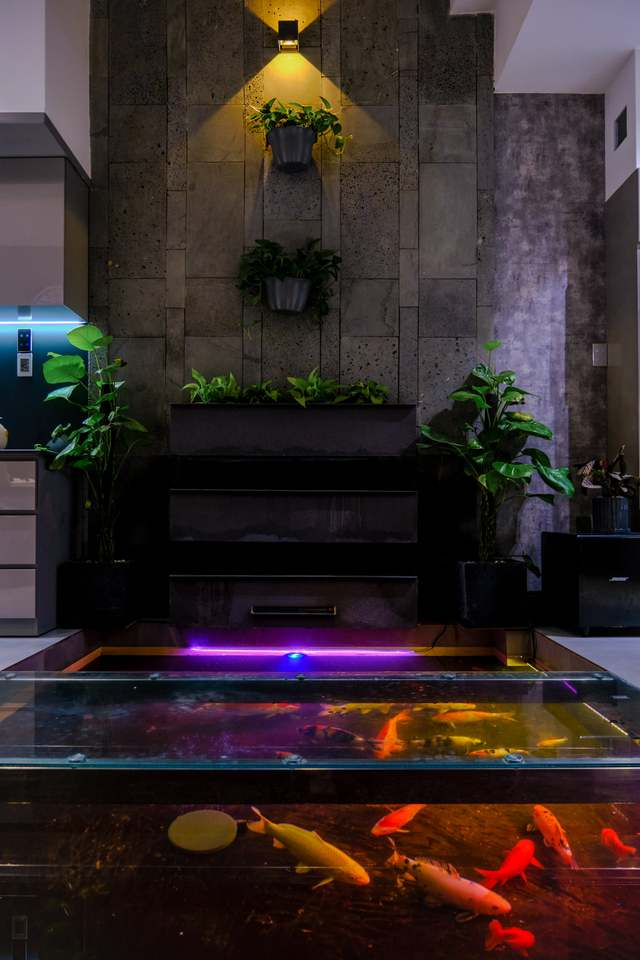 Ngôi nhà phố được thiết kế hiện đại, tinh tế: Không gian sống nhiều cây xanh, có cả bể cá Koi hợp phong thủy, đem lại may mắn cho gia chủ - Ảnh 12.