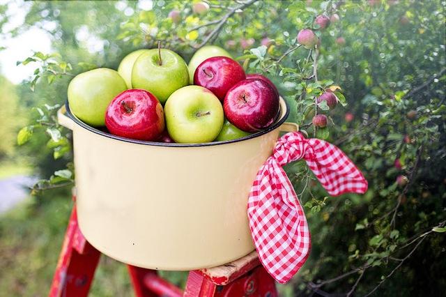 9 món khoái khẩu của gan: Càng ăn uống nhiều, càng giữ được trạng thái khoẻ mạnh cho bộ phận khổ nhất nhì cơ thể  - Ảnh 3.