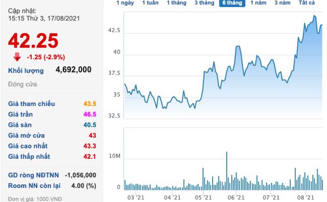 Nam Long (NLG): Chào bán 60 triệu cổ phiếu với giá 33.500 đồng/cp, dự kiến thu về hơn 2.000 tỷ đồng - Ảnh 1.