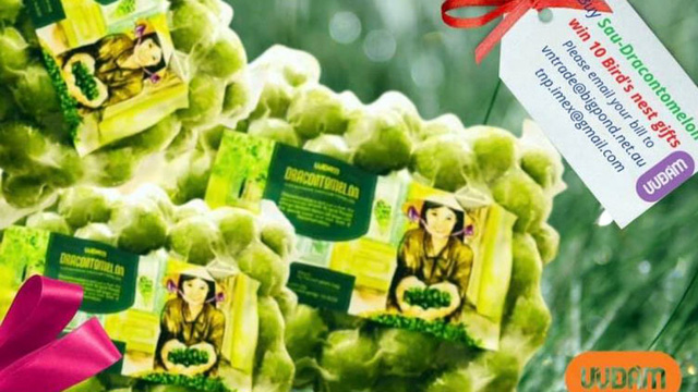 Quả sấu đông lạnh Việt Nam được bán 18 AUD/kg tại Australia - Ảnh 1.