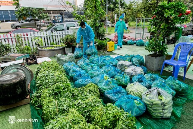 Chuyện cư dân chung cư ở Sài Gòn nấu hàng trăm suất ăn mỗi ngày tiếp sức các Bệnh viện dã chiến: Những người tham gia phải có xét nghiệm âm tính - Ảnh 3.