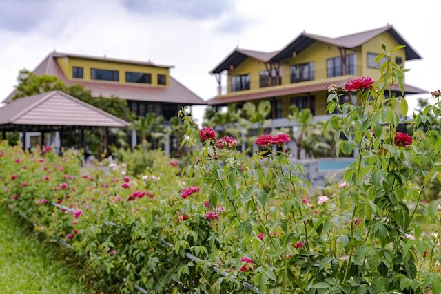 Vì đam mê và thích tụ tập, người phụ nữ này mua 6000m2 đất ở Ba Vì xây cả một resort mini sang chảnh để tận hưởng cuộc sống nghỉ dưỡng cho gia đình - Ảnh 9.