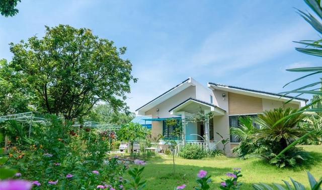 Nhà vườn 5.000m2 tuyệt đẹp ở ven đô Hà Nội: Không gian sống đơn giản, gần gũi với thiên nhiên nhưng mất ít công chăm sóc, để nhà thực sự là nơi nghỉ ngơi, thư giãn - Ảnh 2.
