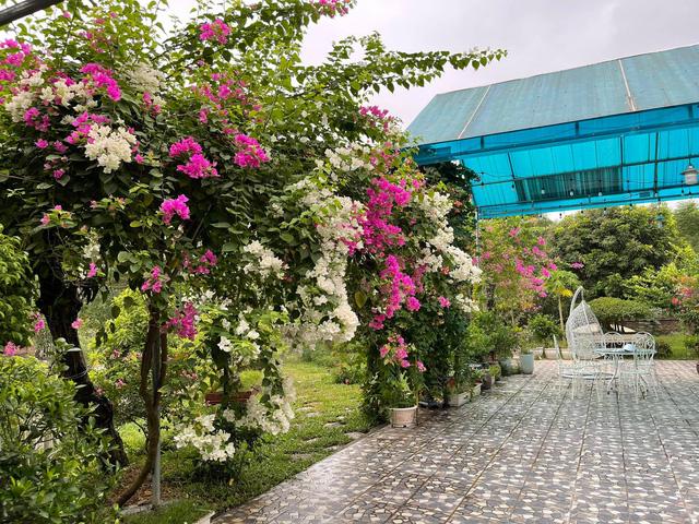 Nhà vườn 5.000m2 tuyệt đẹp ở ven đô Hà Nội: Không gian sống đơn giản, gần gũi với thiên nhiên nhưng mất ít công chăm sóc, để nhà thực sự là nơi nghỉ ngơi, thư giãn - Ảnh 8.