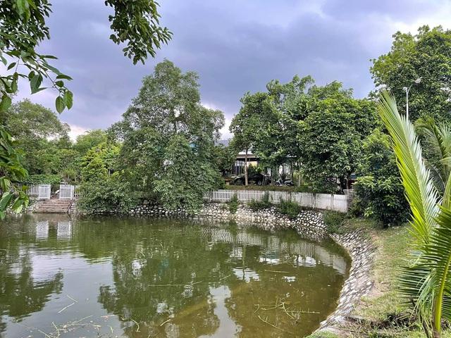 Nhà vườn 5.000m2 tuyệt đẹp ở ven đô Hà Nội: Không gian sống đơn giản, gần gũi với thiên nhiên nhưng mất ít công chăm sóc, để nhà thực sự là nơi nghỉ ngơi, thư giãn - Ảnh 12.