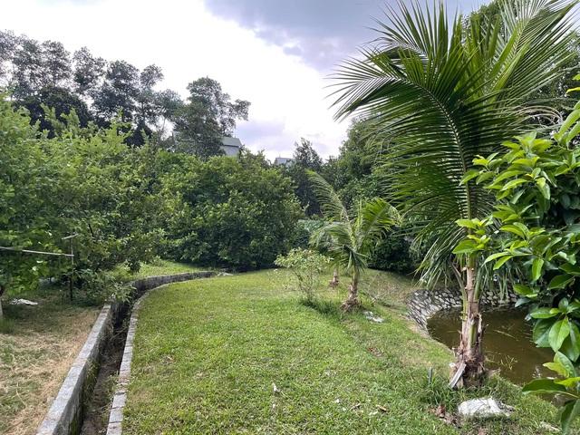Nhà vườn 5.000m2 tuyệt đẹp ở ven đô Hà Nội: Không gian sống đơn giản, gần gũi với thiên nhiên nhưng mất ít công chăm sóc, để nhà thực sự là nơi nghỉ ngơi, thư giãn - Ảnh 9.