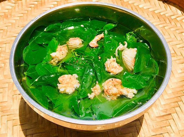 Đây là sai lầm tai hại khi ăn rau ngót, nhiều người Việt không biết để tránh  - Ảnh 3.
