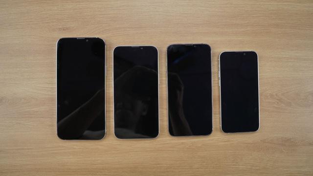 Mô hình iPhone 13 xuất hiện tại Việt Nam - Ảnh 2.