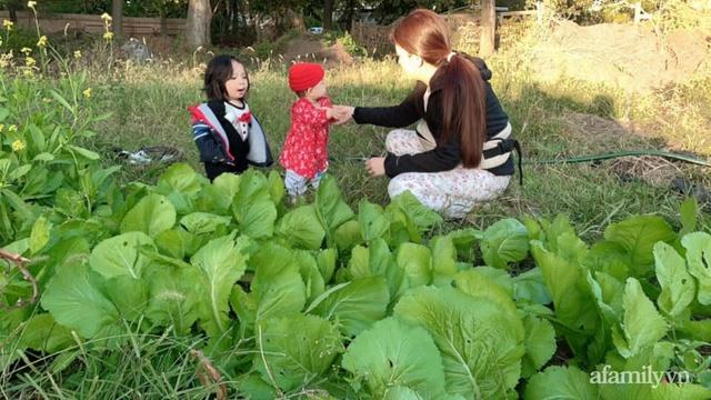 Khu vườn của mẹ Việt sai trĩu rau củ với kích thước khủng - Ảnh 17.