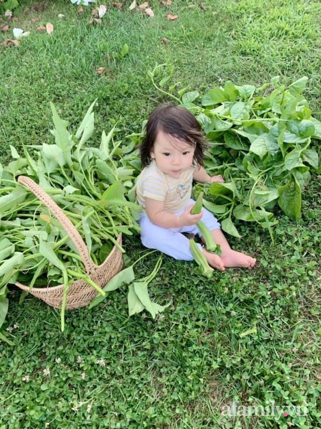 Khu vườn của mẹ Việt sai trĩu rau củ với kích thước khủng - Ảnh 25.