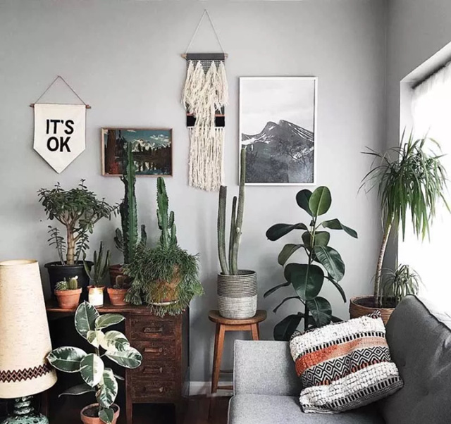 """6 sai lầm """"kinh điển"""" khi trang trí nhà và cách cải tạo khiến bạn phải kinh ngạc  - Ảnh 4."""