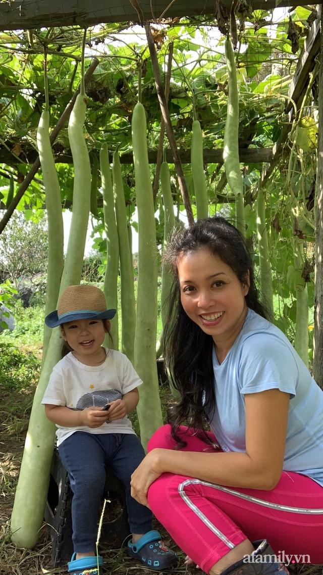 Khu vườn của mẹ Việt sai trĩu rau củ với kích thước khủng - Ảnh 6.