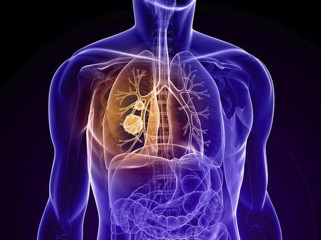 Tuổi 50 sợ ung thư, tuổi 60 sợ tim mạch: Mỗi nhịp sống một nguy cơ nhưng nếu thực hiện tốt những thói quen lành mạnh, bạn có thể vượt qua tất cả để đắc thọ - Ảnh 2.